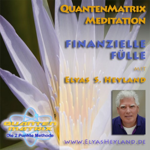 FinanzielleFuelleCD-Cover